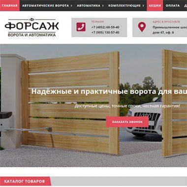 """Продвижение сайта компании """"ФОРСАЖ"""" - ворота и автоматика"""